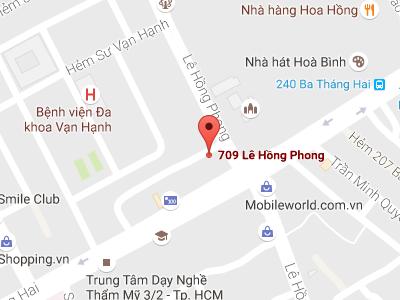 hcmcmap_709lehongphong